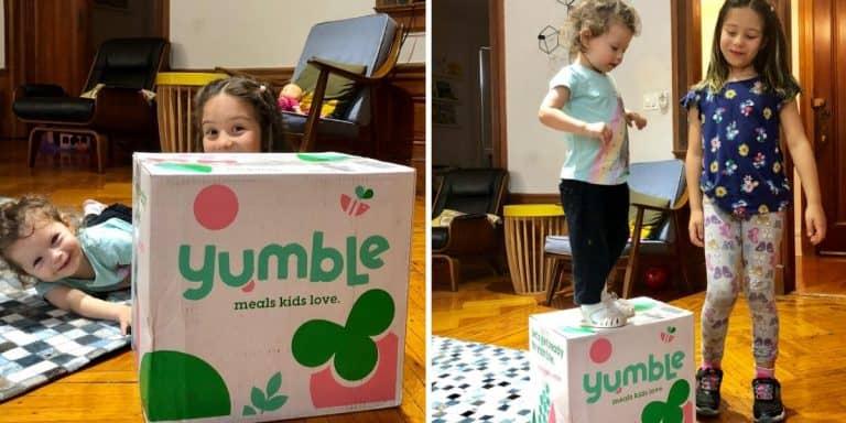 Yumble review 2019